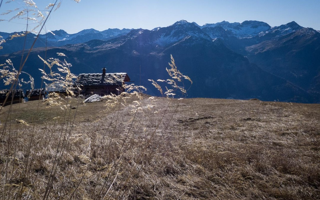 hochwang pagiger bleis sommer